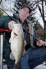 largemouth bass Delaware