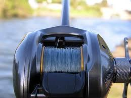 baitcast reel and bass fishing line
