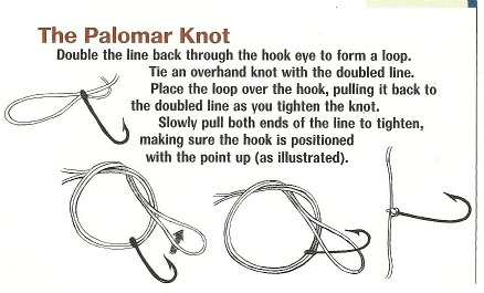 bass fishing line tied with Palomar knot