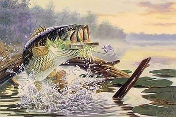 buzzbait bass fishing lure