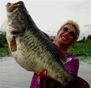 tied world record largemouth bass from Japan